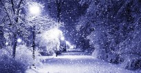 Christmas-Photo-Snow-14
